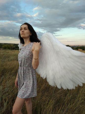 Аренда, продажа крылья из подложки