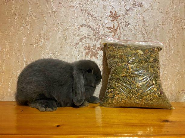 А вы уже купили корм для любимчика кролика или морской свинки?)