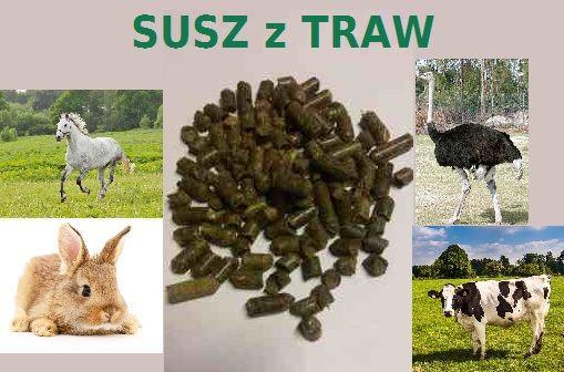 Uzupełnienie żywienia u koni, krów, królików-SUSZ Z TRAW/trawokulki