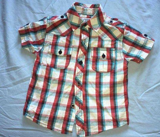 Camisas de menino (verão)