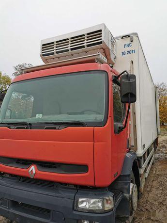 Samochód ciężarowy Renault premium chłodnia