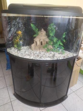 Akwarium narożne panoramiczne z szafką