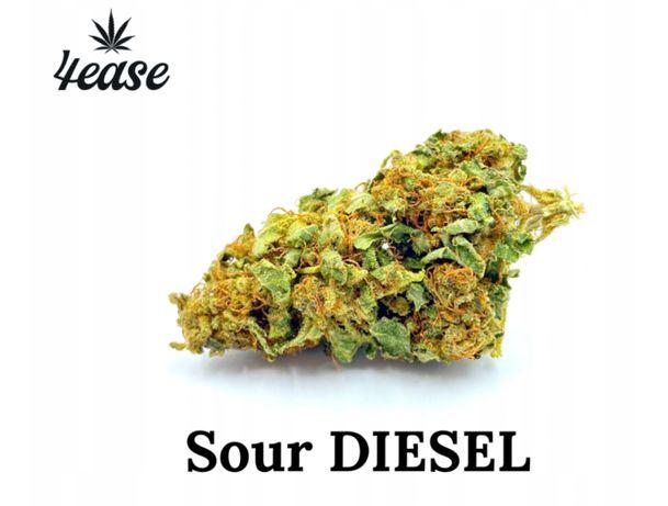 4EASE Susz konopny CBD Sour Diesel 5g