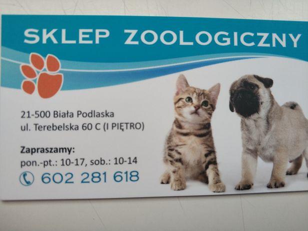 strzyzenie psow i kotow Fryzjer dla psow Biala Podlaska Sklep Zoolog.