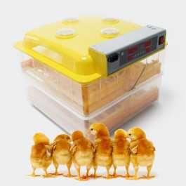 Chocadeira 112 ovos automática-NOVA