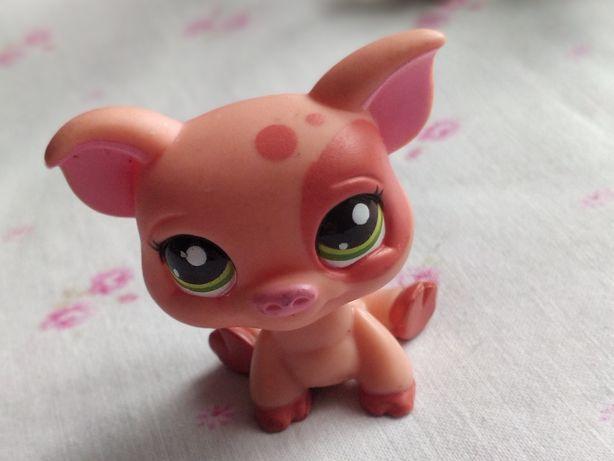 Littlest Pet Shop - LPS - Hasbro - Różowa świnka