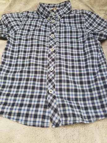 Koszula krata, krótki rękaw, chłopiec 110 H&M