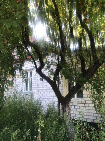 Продаж будинку в м. Радомишль