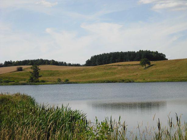 własne jezioro oraz działka z wydanymi WZ na Kaszubach