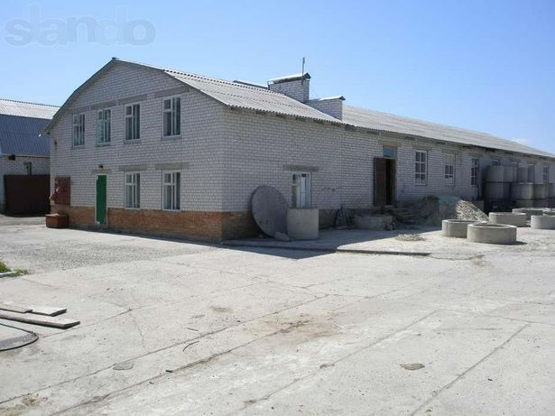 Автобазар в г. Смела (территорию для продажи авто, сдадим в аренду)