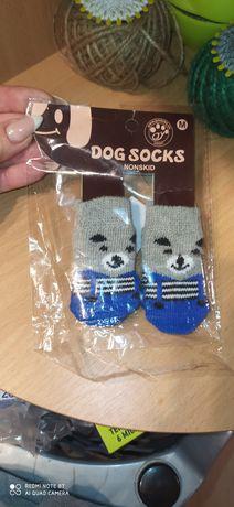 Продам носочки новые для кота или собачки