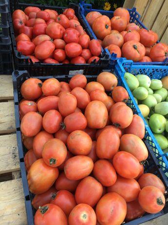 Pomidor gruntowy,idealny na przetwory
