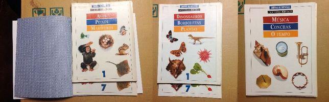 Enciclopédias Visuais (coleções fascículos)