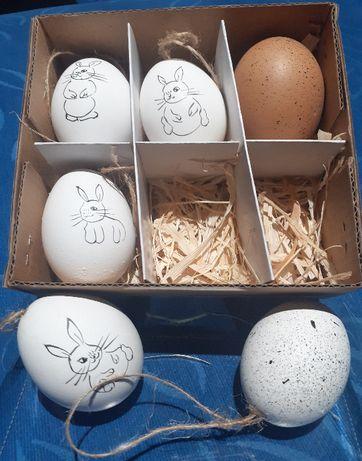 Zestaw pomalowanych w króliki jajek ozdobnych