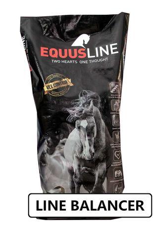 EQUUS LINE BALANCER dla koni nabieranie masy i rozwój 20 kg