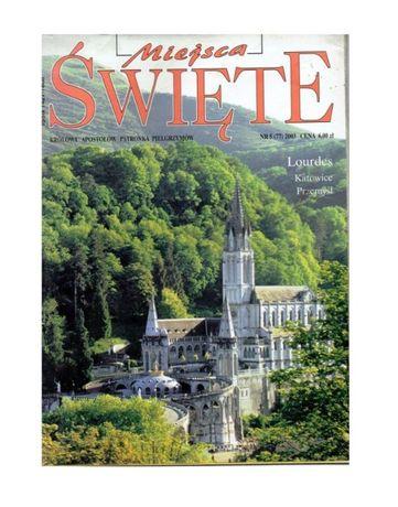 Miejsca Święte Lourdes, Katowice, Przemyśl królowa