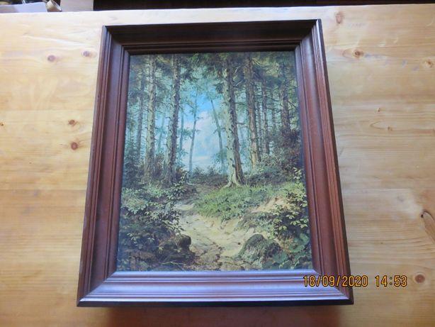 Obraz Lasu Xaverego Buhlera (51cm x 61cm )