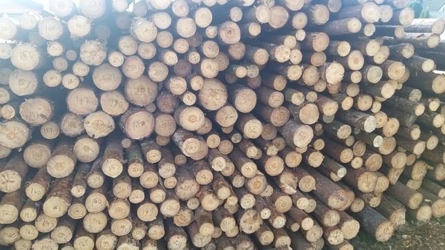 Słupki ogrodzeniowe, stemple drewniane budowlane, możliwość zamówienia