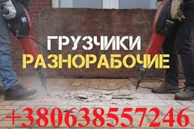 ГРУЗЧИКИ в ВИННИЦЕ Помощь при грузоперевозках Крепкие и трезвые ребята