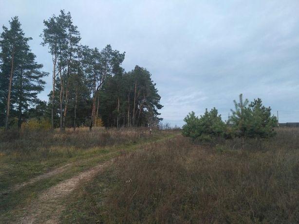 Продам участок под застройку Литвиновка, Киевской области