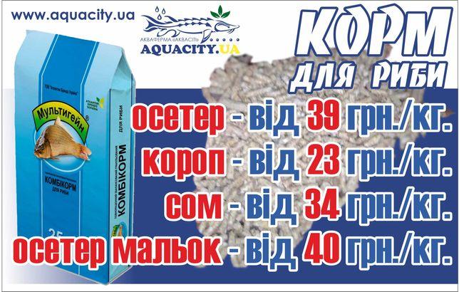 Корм для риби (осетер, короп, кларієвий сом) осетра, карпа
