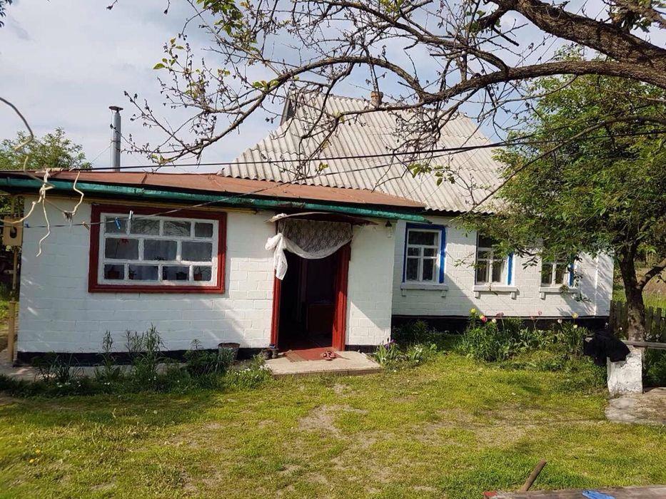 Предлагаем к продаже дом в с. Бузуков Черкасского района Бузуков - изображение 1