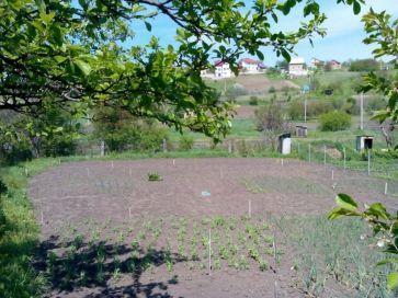 Продам земельну ділянку, Тернопіль Петриків