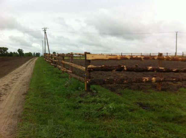 СРОЧНО продам свой зем участок в Ясногородке