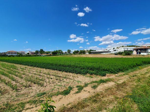 Terreno para construção centro de Mirandela