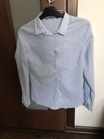 Koszula bawełniana jak nowa niebieska Zara Basic 34XS