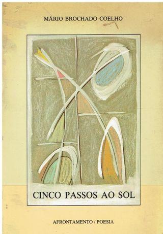 8917 Cinco Passos Ao Sol Ciclos do Efémero de Mário Brochado Coelho