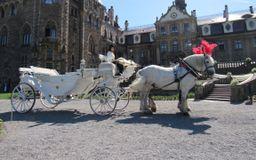 kareta bryczka do ślubu, końmi do ślubu
