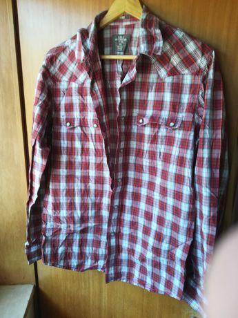 Camisa L Slim fit, usada