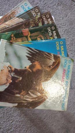 Colecção de livros vida animal.