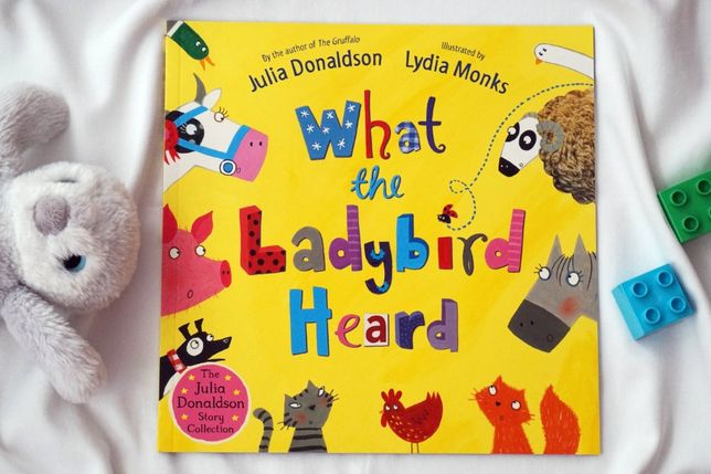 """What the ladybird heard"" książka po angielsku - Julia Donaldson"
