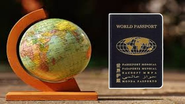 Паспорт гражданина мира Украина