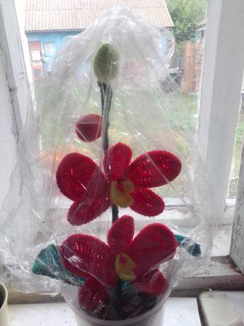 В'язана орхідея крючком