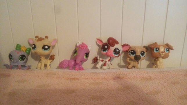 Lps Littlest pet shop 4 Unikat