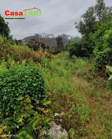 Terreno Urbano 2700m2 - Redinha