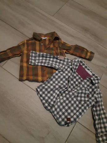 Детские рубашки Coccodrillo 74 размер