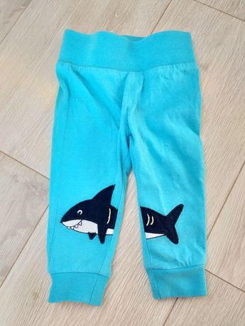 Spodnie dla chłopca w idealnym stanie rozmiar 68 rekin baby shark