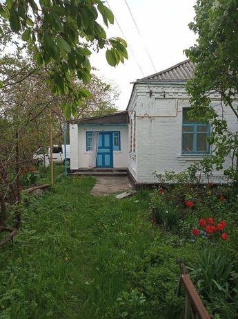 Будинок в с.Шевченкове
