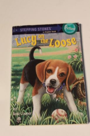 Livro em Inglês - Lucy on the Loose