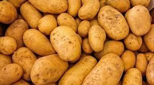 Ziemniaki jadalne Denary Lordy cena za worek 15kg