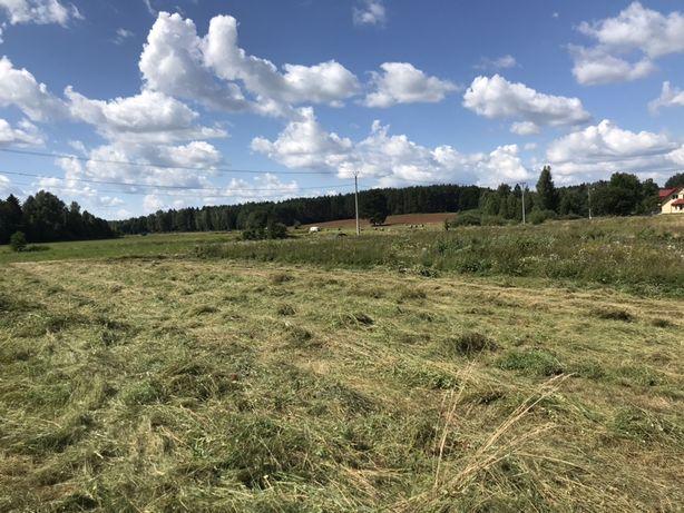 Oddam siano w zamian za skoszenie łąki 1 ha kolonia Sobolewo