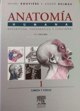 Livros Anatomia Humana - Rouviere - NOVOS