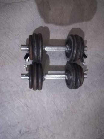 Halteres Musculação 20 kg discos