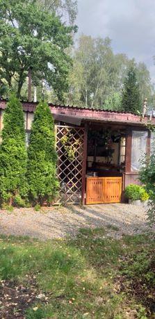 Sprzedam domek kempingowy Jezioro Dzierżno