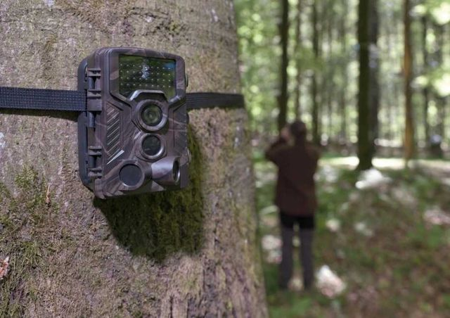 Fotopułapka kamera leśna