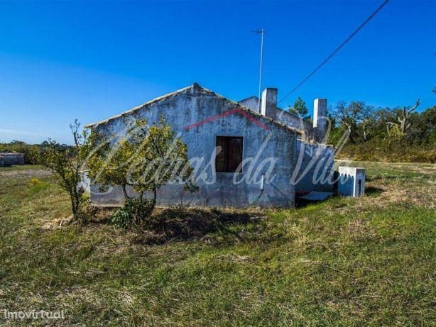 Quinta de 1,15ha c/2 casas de 76,5m2 e 70m2 na Carrasquei...